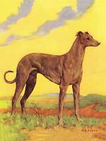 PAINTING PORTRAIT ANIMAL DOG HOUND YELLOW SKY ART POSTER PRINT LV2683