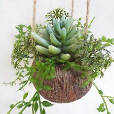 künstliche Sukkulenten Kakteen künstlicher Kaktus hängend Kunstpflanze Kokosbech