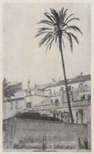 D8903 La Palma di Loano - Stampa d'epoca - 1926 vintage print