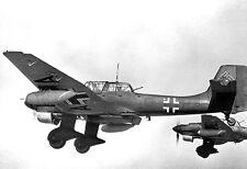 WWII Photo Luftwaffe Ju87 Stuka in Flight  WW2 B&W World War Two / 6078