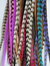 feather hair extensions kit real ebay 30 mixed colours  10-14""