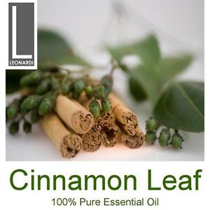 CINNAMON LEAF 100% PURE ESSENTIAL OIL 100ML