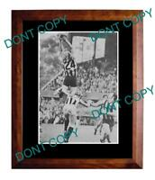 PETER KNIGHTS HAWTHORN FC GREAT 1972 A3 SPECKY PRINT