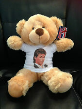 A-HA Morten Harket 8 inch VERY CUDDLY TEDDY BEAR