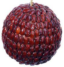 Seed Bean Mosaic Decorative Ball Ornament Natural Christmas Holiday Tree 451e