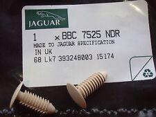 2 NEW JAGUAR XJS REAR QUARTER PANEL FIXING BUTTON OR CLIP CREAM BBC7525NDR