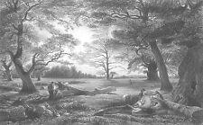 WINDSOR CASTLE GROUNDS & FOREST BEECH TREES ~ 1851 LANDSCAPE Art Print Engraving