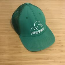 a3570364934 Kelly Green Patagonia Trucker Mesh Hat Retro Camp Lodge Logo Rare Used Cap