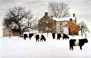 Huff Church Road by Peter Sculthorpe  Country, Cow Print 26x18