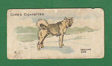 COPE BROS. & CO. - VERY RARE DOG (SCANDINAVIAN) CARD -  ESQUIMO  DOG  -  1912