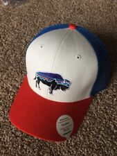 340bd132f3785 Patagonia Unisex Hats for sale