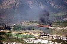 Original Photograph: UP 8444, SP 4449 on Cajon Pass