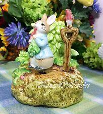 Beatrix Potter Peter Rabbit in Garden Music box Musical rotates