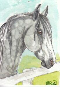 ACEO original Watercolor Art Card Horse dark dappled gray Heavy draft cross mare