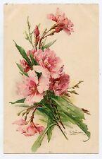 C. KLEIN . Les fleurs  .  Flowers .