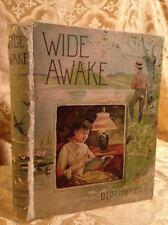 Wide Awake Volume AA Rare & Collectible Fine Binding Antique Book 1888