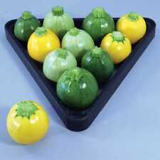 Round Summer Squash Courgette Zucchini - Yellow & Green Mix - 10 Vegetable Seeds