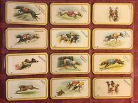 1926 CARRERAS-THE GREYHOUND RACING GAME FULL 52 CARD SET-TOBACCO CARDS-EXCELLENT