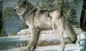 """Watchful Pause""Grey Wolf Tapestry Throw,51""x68"",Jos.Hautman,Lodge,Wildlife"