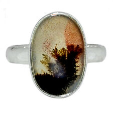 Xtremegems Black Botswana Agate 925 Sterling Silver Ring Jewelry Size 10.5 27775R