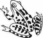 TREE FROG WITH SPOTS SIDE ON CAR DECAL STICKER