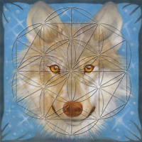 Wolf Totem Animal Flower of Life Grid Card Laminated 8x8inch Leadership Wisdom