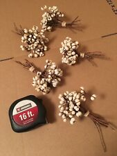 Tallow Berries 10 Plus Stems Per Bundle / Very Fast Shipping