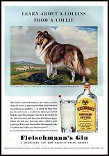 PUBBLICITA' 1940 FLEISCHMANNS GIN CANE DOG COLLIE PASTORE SCOZZESE DRINK BAR