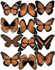 Cakeshop 12 x PRE-CUT Orange Edible Butterfly Cake Toppers