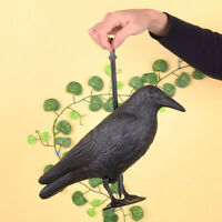 Plastic Crow Decoy Hunting Full Body Stand Bodied Crow Jackdaw Bird CR