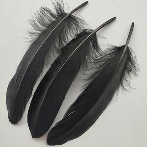 Wholesale 33 Colours 25-100 pcs 15-20 CM/6-8 Inches Natural hard Goose Feathers