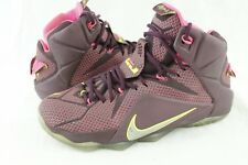 8c8ef079889f NIKE LEBRON XII 12 DOUBLE HELIX Basketball Shoes Mens 8.5 Purple Pink  Accents