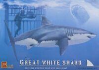 NEW Pegasus Hobbies Plastic Model Kit The Great White Shark 1/18 Scale PGH9501