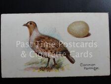 Single: 'Common Partridge' - 'BIRDS & EGGS' Harvey & Davy 1905