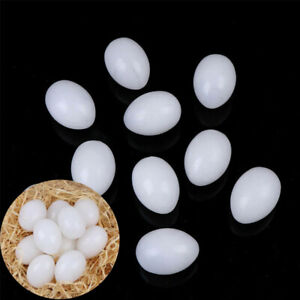 10Pcs Hatching Supplies Fake White Solid Plastic Dummy Eggs Solid Pigeon Eggs