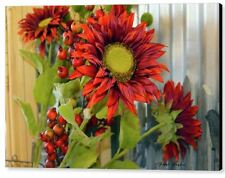 Red Sunflowers Large by Floyd Snyder Floral Garden Canvas Giclee Print 12x16