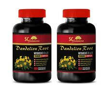 skin health products - DANDELION ROOT 520MG - dandelion leaf capsules 2B