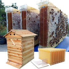 Wooden Fir Beekeeping Super Brood Box Beehive Tube Auto Hive Flow Honey Frames