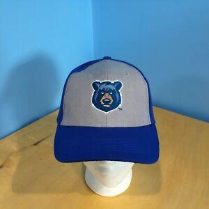 Tennessee Silver Smokies SGA Strapback Baseball Cap VGUC MILB Bear Logo