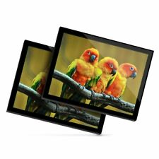 2 x Glass Placemats 20x25 cm - Lovebirds in Tree Love Bird Parrot  #21997