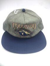 Vintage Colorado Mountains Made In USA Baseball Cap Hat