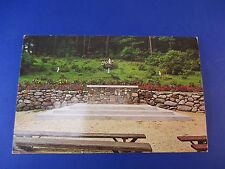 Cathedral Of The Vines Rindge,Nh Vintage Colorful Postcard Unused Pc14