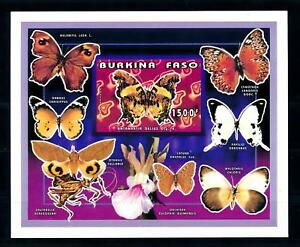 [93792] Burkina Faso 1996 Insects Butterflies Papillons Imperf. Sheet MNH