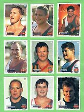 1995 SERIES 1 SOUTH QUEENSLAND CRUSHERS  RUGBY  LEAGUE CARDS