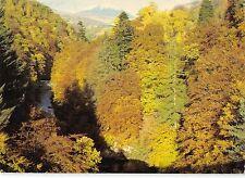 B100142 the pass of   killiecrankie carn liath   scotland