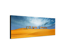120x40cm Kamelsafari Panorama Wüste Dubai Arabien Sand Rahmen Wandbild Sinus Art