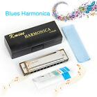 Blues Harmonica French Harp Mouth Organ Phosphor Bronze 10 Hole Key of C New USA