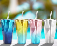 Pop Stainless Steel Tumbler Cup with Straw Hot and Cold Double Wall Drinking Mug