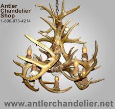 10 LIGHT INVERTED REAL ANTLER WHITETAIL DEER CHANDELIER Rustic Lights WTCASCINVT