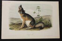 Original Audubon Quadruped - SWIFT FOX - Octavo Plate LII